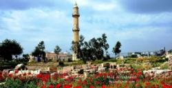 Nusaybin Zeynel Abidin Camii ve Türbesi