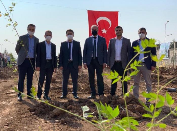 Milli Ağaçlandırma Gününde Nusaybin'e yüzlerce fidan dikildi