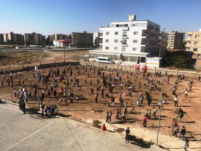 Nusaybin'de 3 saatte 14 bin fidan dikildi