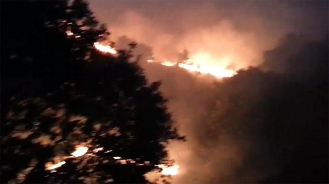Akarsu'da ormanlık alanda yangın çıktı