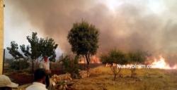 Bagok dağındaki orman yangınından korkutucu görüntüler