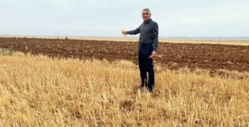 Başkan Aktaş, kuraklık nedeniyle Nusaybin'in afet bölgesi ilan edilmesini istedi