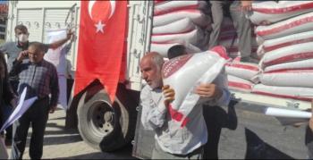 Nusaybin'de Çiftçilere tohumluk mercimek dağıtıldı