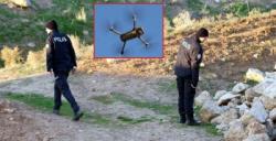 Sırra kadem basan çiftin arama çalışmaları drone destekli sürüyor