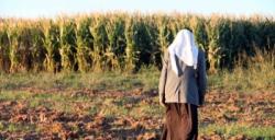 Valilik, Sınır hattına uzun boylu bitkilere ekim yasağı getirdi