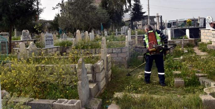Nusaybin'de mezarlıklarda temizlik çalışmaları