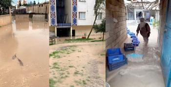 Nusaybin'de sağanak yağış