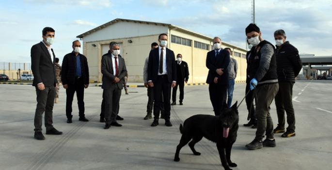 Nusaybin Gümrüğünde göreve başlayan Narkotik Dedektör Köpeği uyuşturucuya geçit vermeyecek