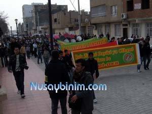 Nusaybin Kurdi-der'den Dünya Anadil günü etkinlikleri