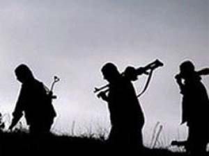 Valilik: Nusaybin'de 1 PKK/YPG'li teslim oldu
