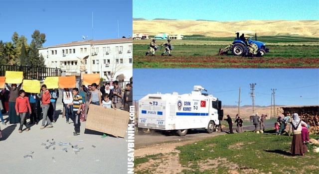 Nusaybin'de mahkemelik olan araziler için arbede çıktı