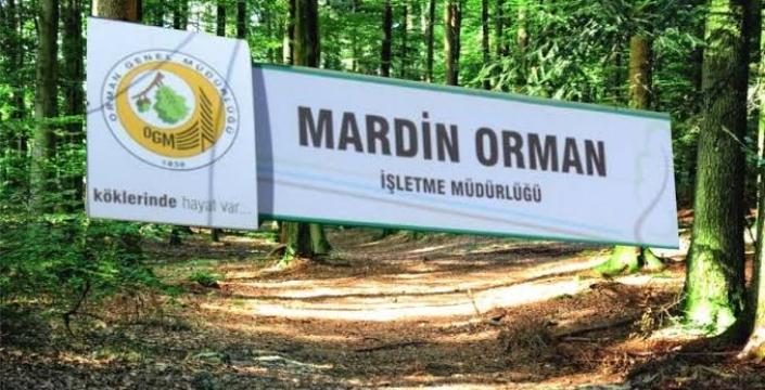 Mardin geneli ormanlık alanlara giriş - çıkışlar yasaklandı